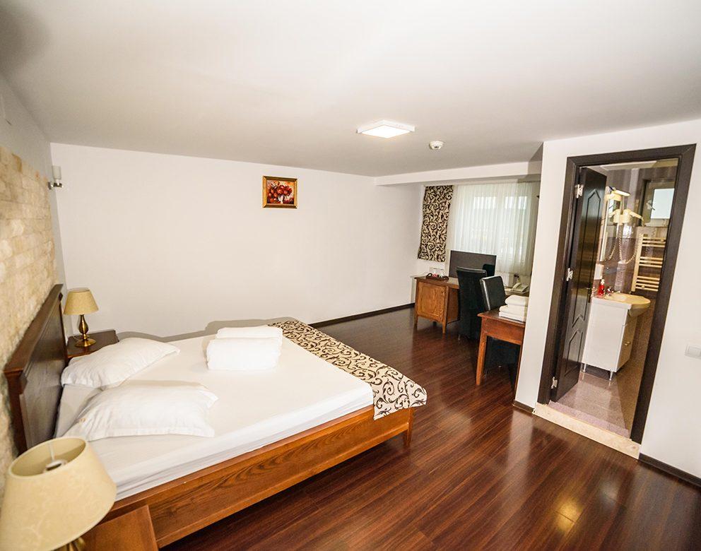 Camera Dubla Standard - Hotel Elite Turnu Severin